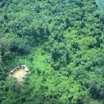 Brazil's Yanomami territory