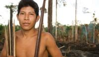 Brazil's Awa tribe