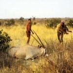 Bushmen notice to sue